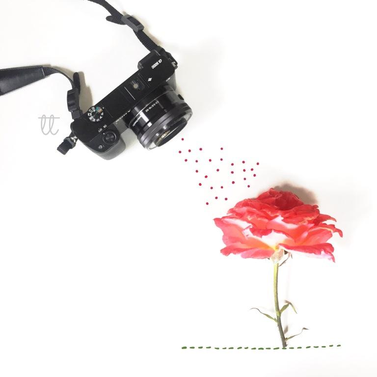 Tati Torres Photography